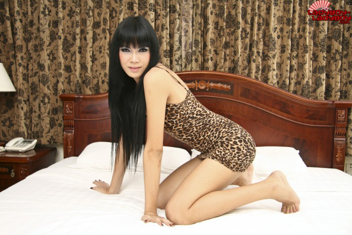 Ladyboy Bee Hair